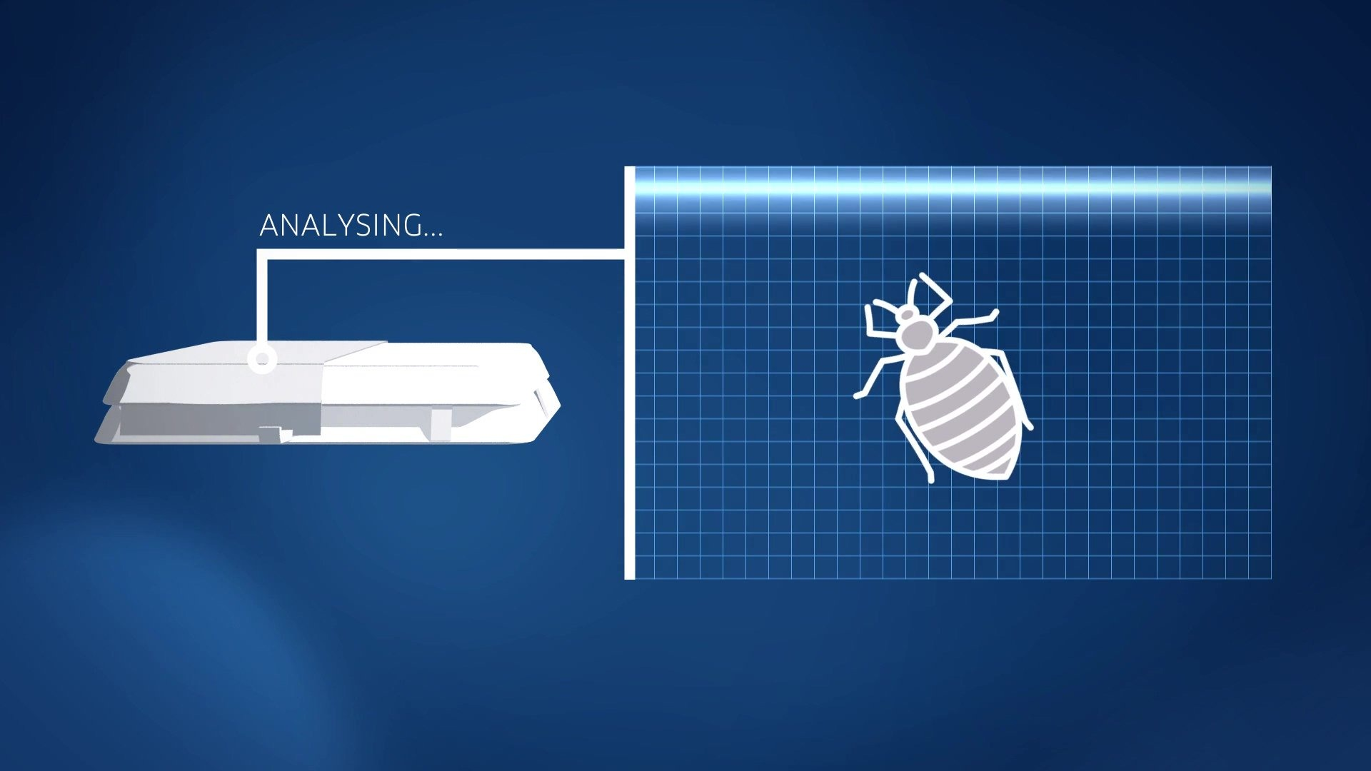 Spotta can help you identify bed bugs